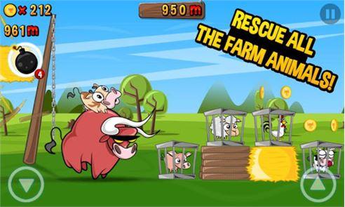 Run Cow Run 5