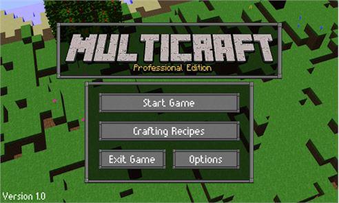 Multicraft: Pro Edition 1