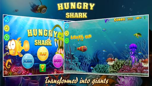 Hungry Shark 5