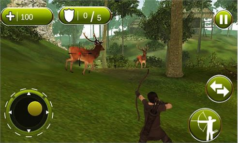 Archery Hunter 3D 3