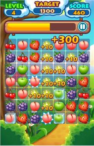 Fruit Link 6