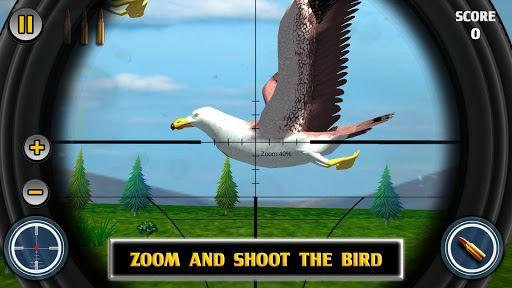 Bird Hunting 6