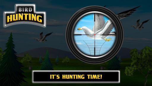 Bird Hunting 5