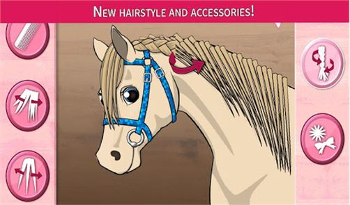 Horse Care – Mane Braiding 5