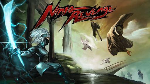 Ninja Revenge 1
