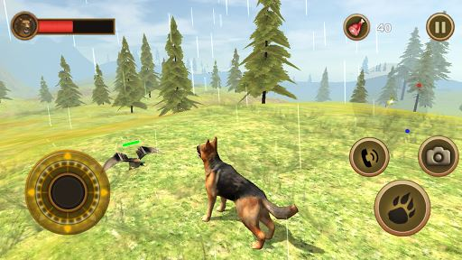 Wild Dog Survival Simulator 4