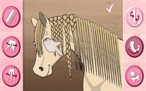 Horse Care – Mane Braiding 6