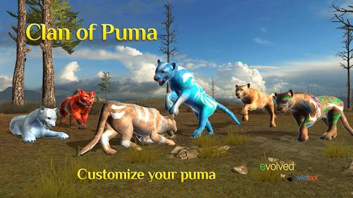 Clan of Puma 1