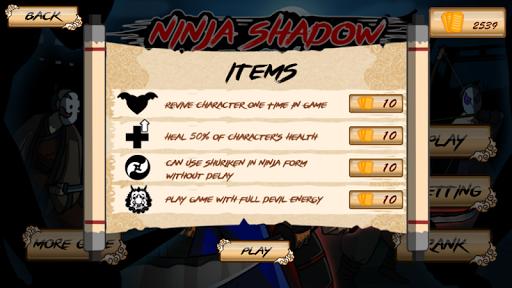 Ninja Shadow 2