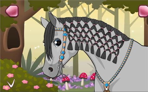 Horse Care – Mane Braiding 4