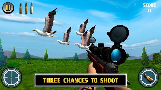 Bird Hunting 1
