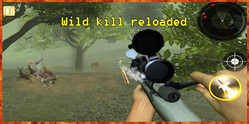 Deer Hunting Sniper Shooter 3