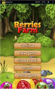 Berries Farm 6