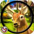 Deer Hunting - Sniper Shooting apk