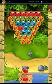 Berries Farm 3
