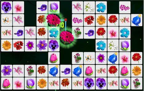 Onet Blossom Flowers 2