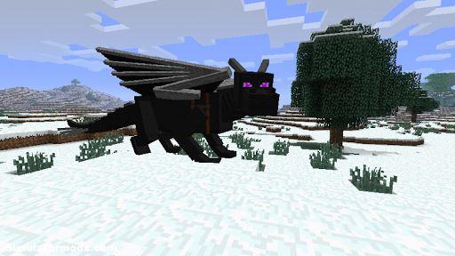 Ender Dragon Mod for Minecraft 1