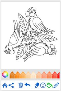 Coloring Book: Animal Mandala 6