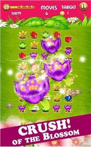 Blossom Crush Mania 3