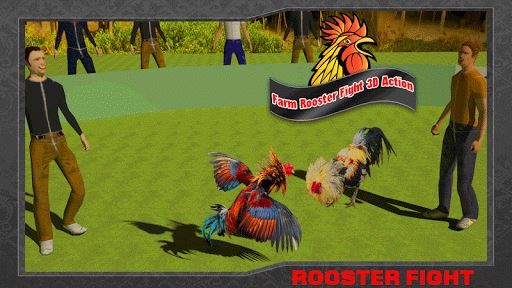 Farm Deadly Rooster Fighting 2