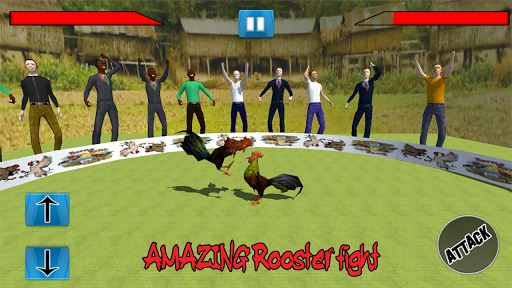 Farm Deadly Rooster Fighting 6